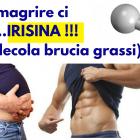 irisina-molecola-brucia-grassi