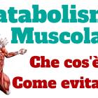 catabolismo-muscolare